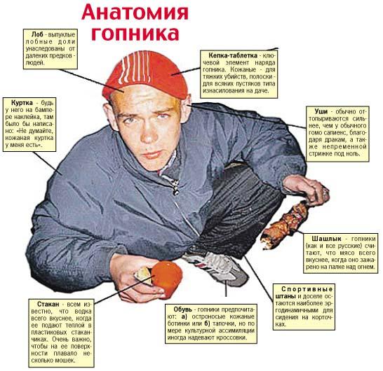 gops anatomy